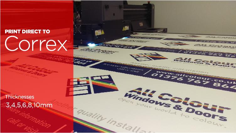 correx-printing-halo